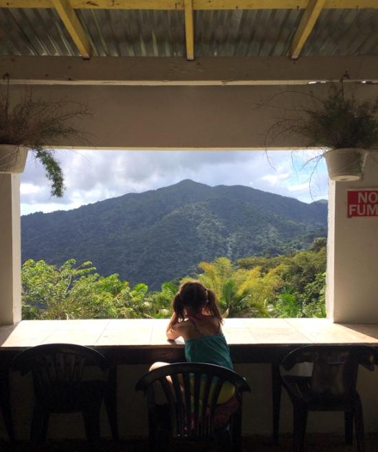 Trip Report} El Yunque National Rainforest | Hi Sugarplum!