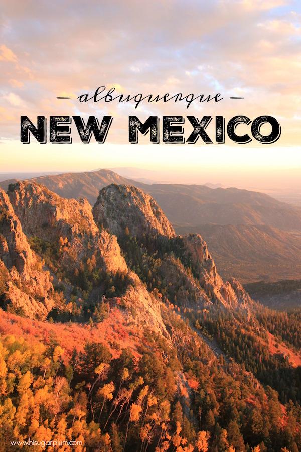 Albuquerque new mexico dating
