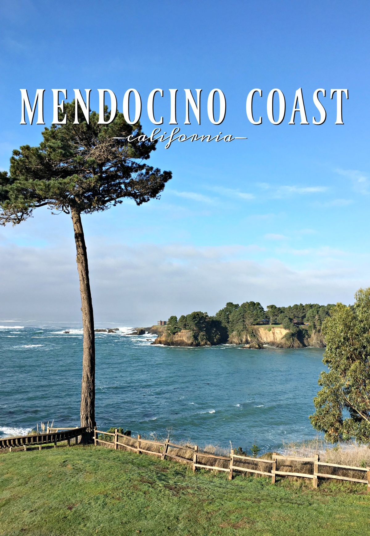 Trip Report | Mendocino Coast