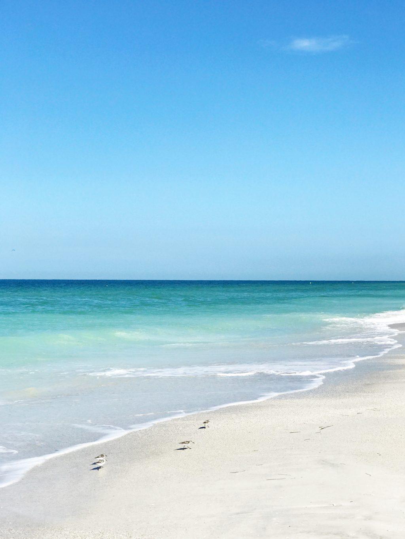 Anna maria island beach report-6940